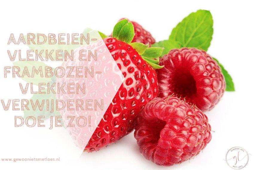 [:nl]Aardbeienvlekken en frambozenvlekken verwijderen doe je zo![:]