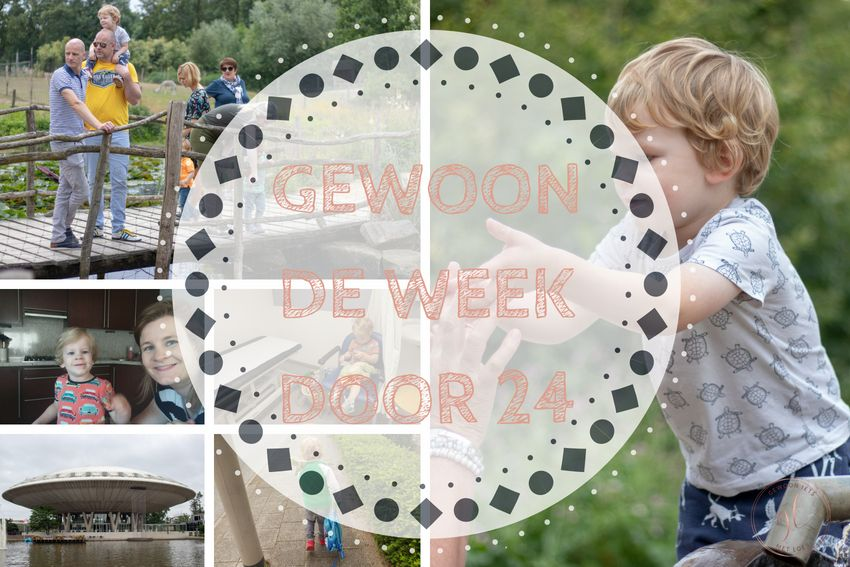 [:nl]Gewoon de week door 24: maandag vrij, iets minder heet en Vaderdag[:]