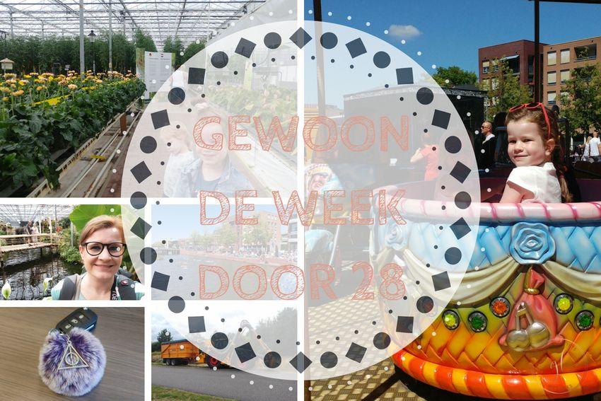 [:nl]Gewoon de week door 28: opnieuw naar het stadhuis en de laatste studiedag[:]