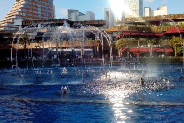 İstanbulun Yükselen Yıldızı WATER GARDEN KAPAK
