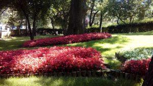 Yusa Tepesi Bahçe