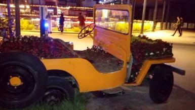 WaterGarden jeep