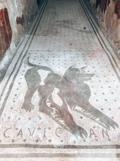 Pompei İtalya Cave Canem
