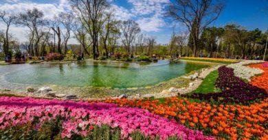 İstanbul'da baharın tadını çıkarabileceğiniz rotalar