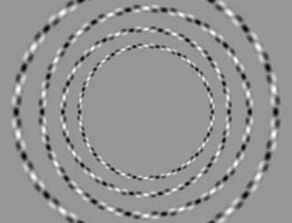 optiscshe illusie cirkels raken niet