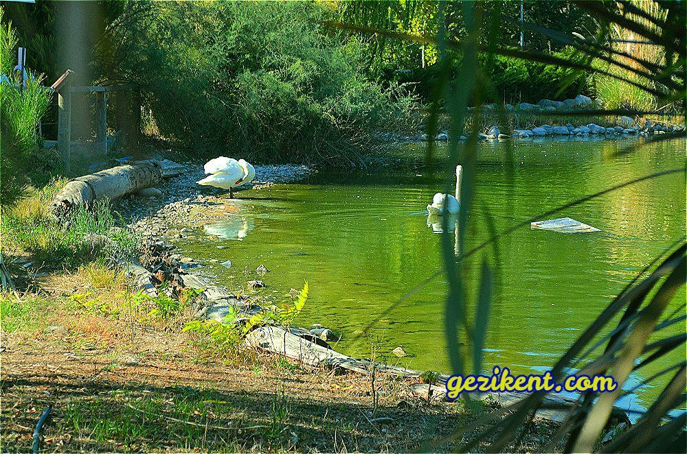Avrupa'nın En Büyük Doğal Yaşam Parkı İzmir'de.