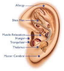 ooracupunctuur-eetlust_remmen-gezondheid-acupressuur