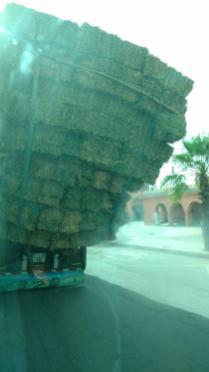 Ladekünste in Marrakesch