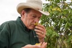 Gary Young Sniffing Ylang Ylang