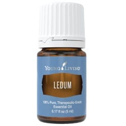 Ledum Essential Oil, 5 ml