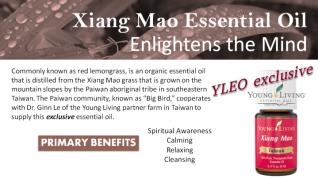 xiang-mao oil