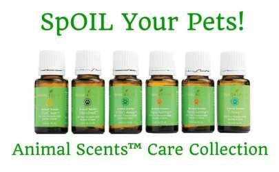 Animal Scents essential oils