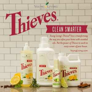 clean-thieves