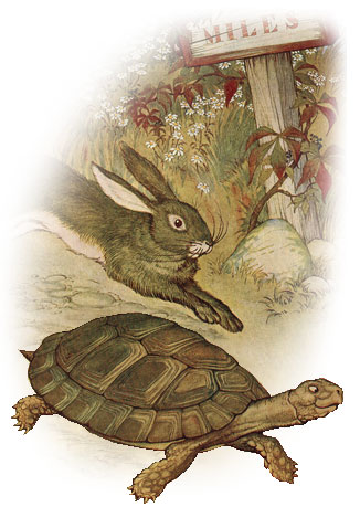 Tortoise and the hare from Aesop's Fables. Metaphor for equestrian marketing website traffic strategies.