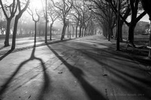 Sombras más importantes que la luz.