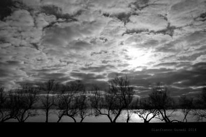 Siluetas de árboles, el sol sale tras la nube, pero hacía buena sombra.