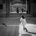 Corre paloma, corre