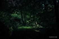 En la oscuridad, en la luz.