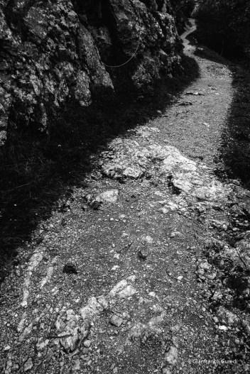 Camino arriba a Tresviso