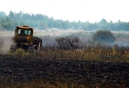 Fears rise over fires in Chornobyl forests