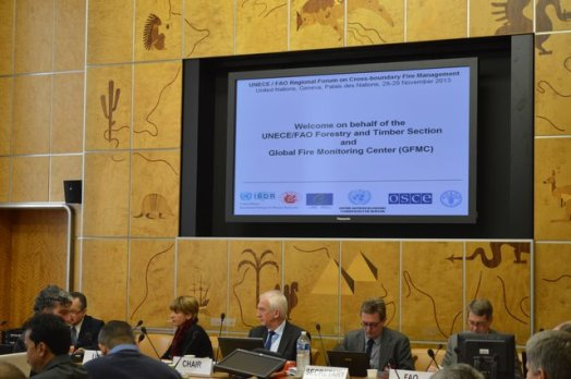 UNECE-Geneva-Fire-Forum-2013-Photos-20