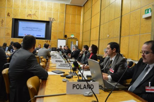 UNECE-Geneva-Fire-Forum-2013-Photos-22