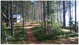 Hütten im Nationalpark Skuleskogen