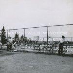 Grand Falls Townsite Swimming Pool July 1956