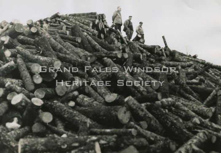 Rattling Brook Bishop's Falls Department, Pat Lahey's Landing. February 27, 1955