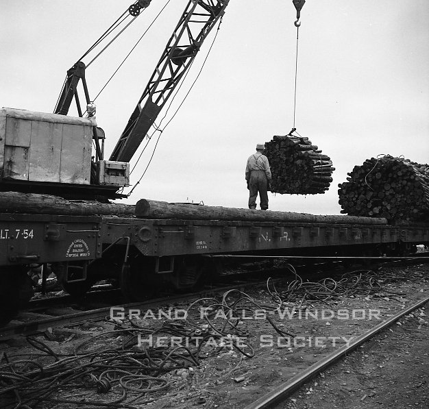 Woods Department. Loading prepwood on train at Terra Nova River. September 1956