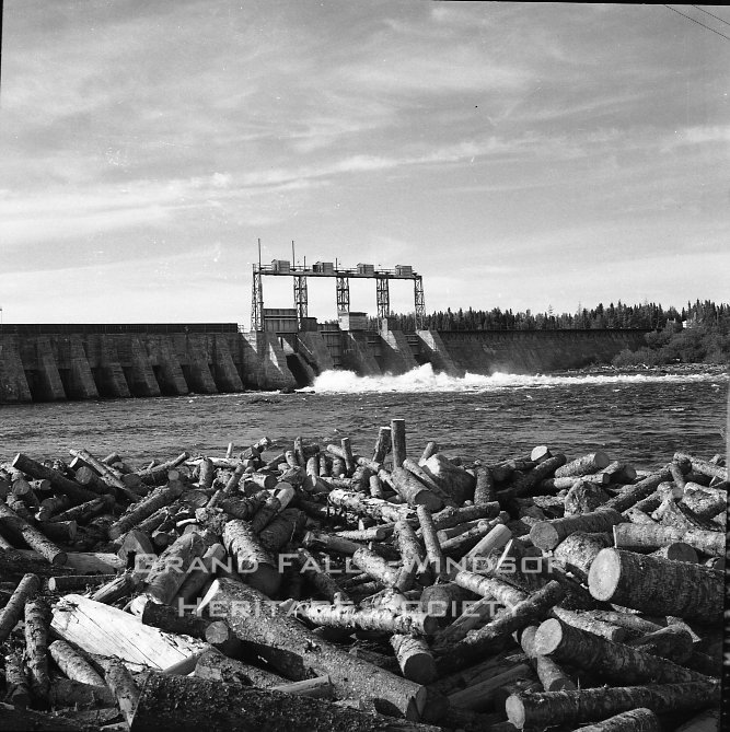 Woods - Exploit's Dam September 1956