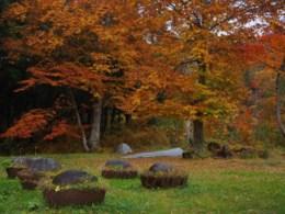 七ツ釜の紅葉