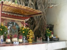 A spirit house for tree spirits, opposite Nikko Hotel, 84 Trần Nhân Tông, Quan Hai Ba Trung, Hanoi - complete Spirit House at the base of this tree, with house, money tree, flowers, incense, figurines etc.