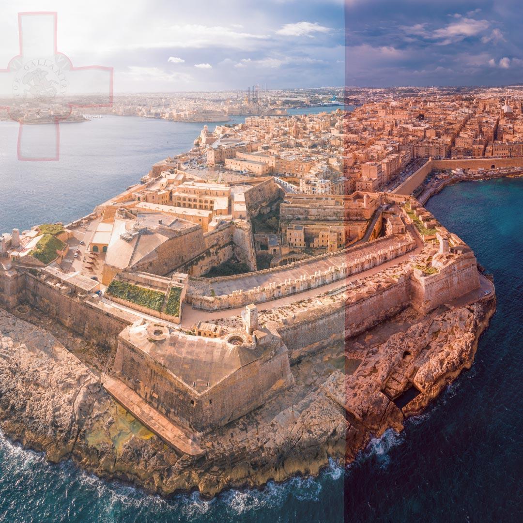 Study-in-Malta