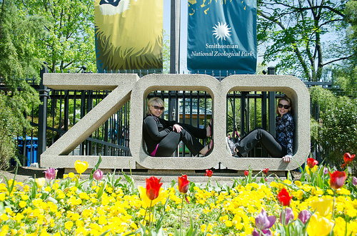 The National Zoo Will Be Open For 1000 Fewer Hours In