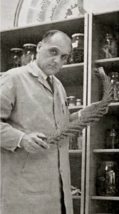 Lou Messmer in the lab at Grays Harbor College in 1967