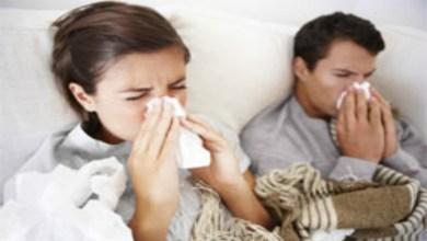 صورة كيف تفرقين بين الأنفلونزا العادية والأنفلونزا الخنازير؟