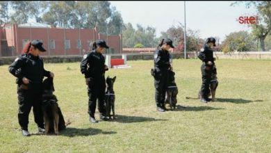 صورة فيديو- حراس المغرب.. كواليس تدريب شرطيات سينوتقنية مغربيات لمواجهة الجريمة والدواعش