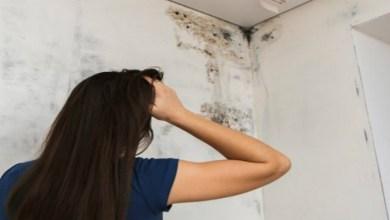 صورة جدران منزلك ستتسبب لك بهذه الأمراض