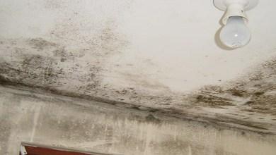 """صورة حيل سحرية ونصائح للتخلص من """"البرودة"""" بسقف منزلك"""