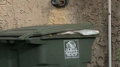 صورة إلقاء القبض على نجمة يوتيوب شهير بعد رميها لطفليها حديثي الولادة في حاوية القمامة – صورة