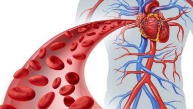 صورة لمرضى الكوليسترول.. حيل لحماية نفسك من النوبات القلبية في رمضان