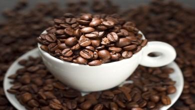 صورة منها الأجبان والقهوة.. أطعمة تجنبي تناولها في وجبة السحور