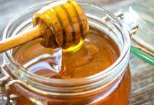 صورة العسل.. ماذا تفعل ملعقة منه يوميا في جسم الانسان؟