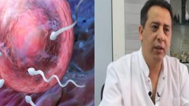 صورة خبير جنسي يكشف أفضل طريقة لتسهيل عملية الإنجاب – فيديو
