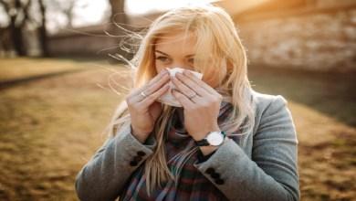 صورة فيروسات تزيد فرصة الإصابة بها في فصل الخريف