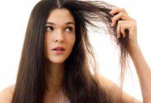 صورة تنعيم الشعر الجاف بمكونات طبيعية من منزلك