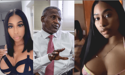 Aliko Dangote Sues His US Based Side Chick Who Leaked His