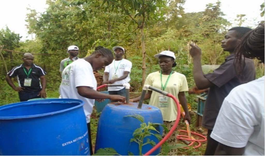 Ghana Permaculture Institute