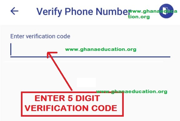 Verify MTN Momo on ECG Power App